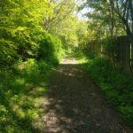 Formonthills Wooodland