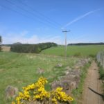 Coul Den Path