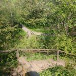 Coul Den Steps