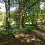 Balgonie Park
