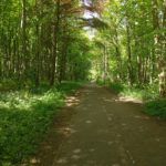 Cycle Network Path